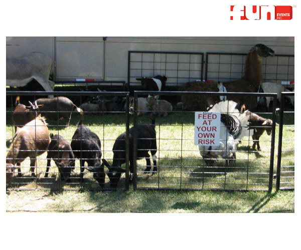 Party Rentals Event Services Supplies Petting Zoo Rental