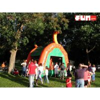 Dinosaur Bounce House Rental
