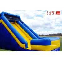 Slide Inflatable - Screamer Slide