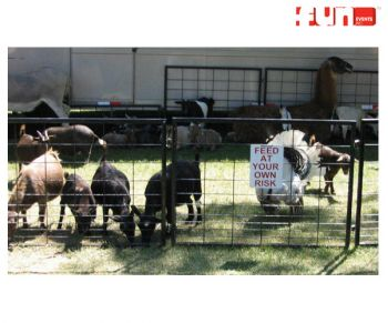Petting-Zoo-Rental