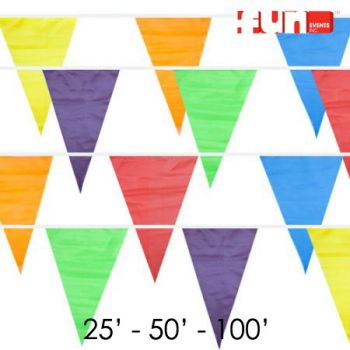Party Pennant Flags
